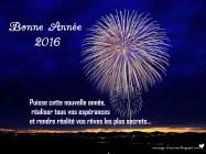 voeux année 2016