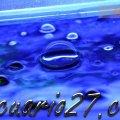 36/365 Agua