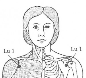 lung1