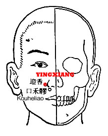 Image result for yingxiang acupuncture