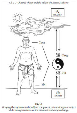 Applied Channel Theory in Chinese Medicine Wang Ju-Yi's