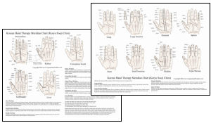 Acupuncture and TCM Charts