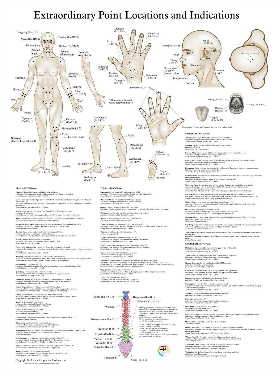 Archives des Acupuncture points  Arts et Voyages