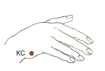 EFT basic recipe KC punt