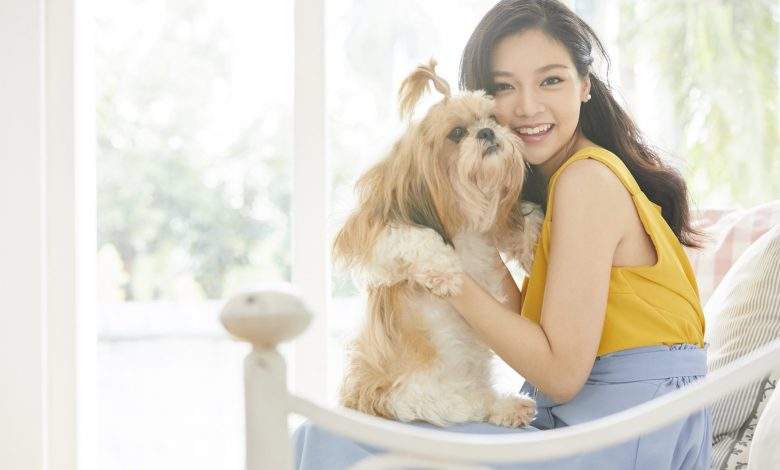 Best things to do in a condo with your lap dogs - Experience the pine-estate lifestyle in a pet-friendly condo like Camella Manors