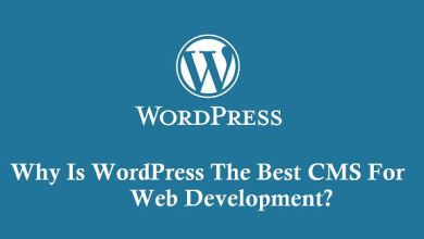 Photo of Why Is WordPress The Best CMS For Web Development?