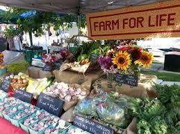 Photo of Save your farmer markets on farmers market insurance