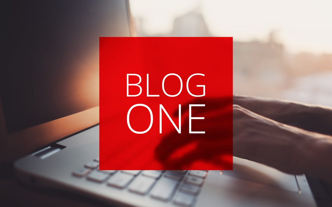 Blog One: Die Blog-Typen