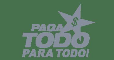 logos pagatodo gris
