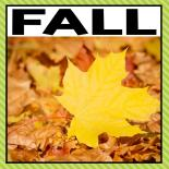 There are so many different fall activities that you can do at home or in the classroom. This page allows you to quickly see our favorite fall ideas, activities and printables that have been featured on A Dab of Glue Will Do
