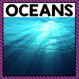 There are so many different ocean activities that you can do at home or in the classroom. This page allows you to quickly see our favorite ocean activities and printables that have been featured on A Dab of Glue Will Do.