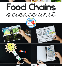 Food Chains - A Dab of Glue Will Do [ 1623 x 981 Pixel ]