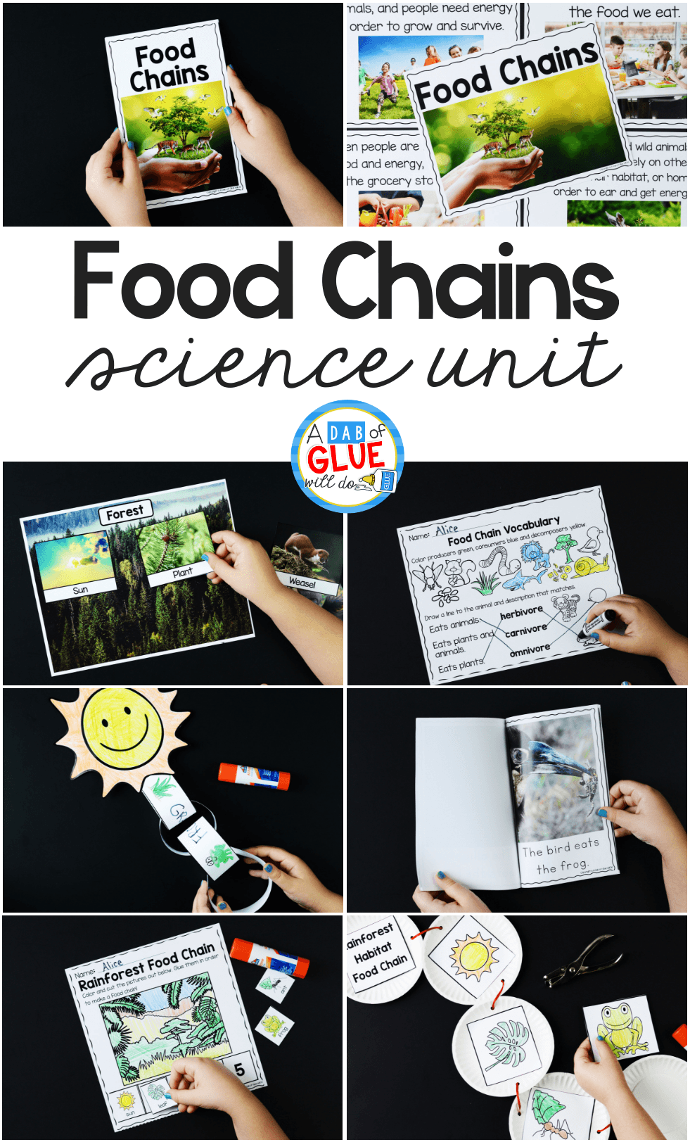 medium resolution of Food Chains - A Dab of Glue Will Do