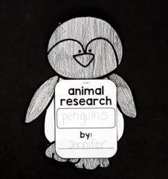 Penguins: An Animal Study - [ 1149 x 1723 Pixel ]