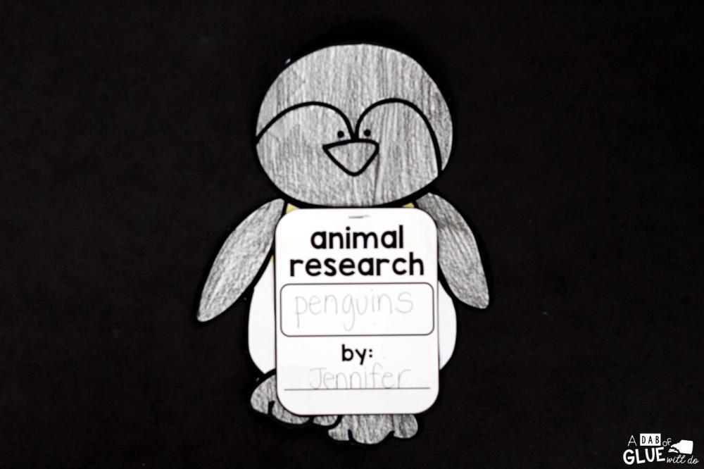medium resolution of Penguins: An Animal Study -
