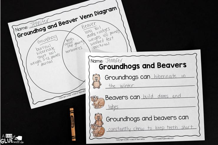 Engage your class in an exciting hands-on experience learning all about groundhogs! This Groundhog: An Animal Study is perfect for science in Preschool, Pre-K, Kindergarten, First Grade, and Second Grade classrooms and packed full of inviting science activities. Students will learn about the difference between groundhogs and beavers, mammals, parts of a groundhog, and a groundhog can, have, are craftivity. When students are done they can complete a groundhog research project. This pack is great for homeschoolers, kids craft activities, and to add to your unit studies!