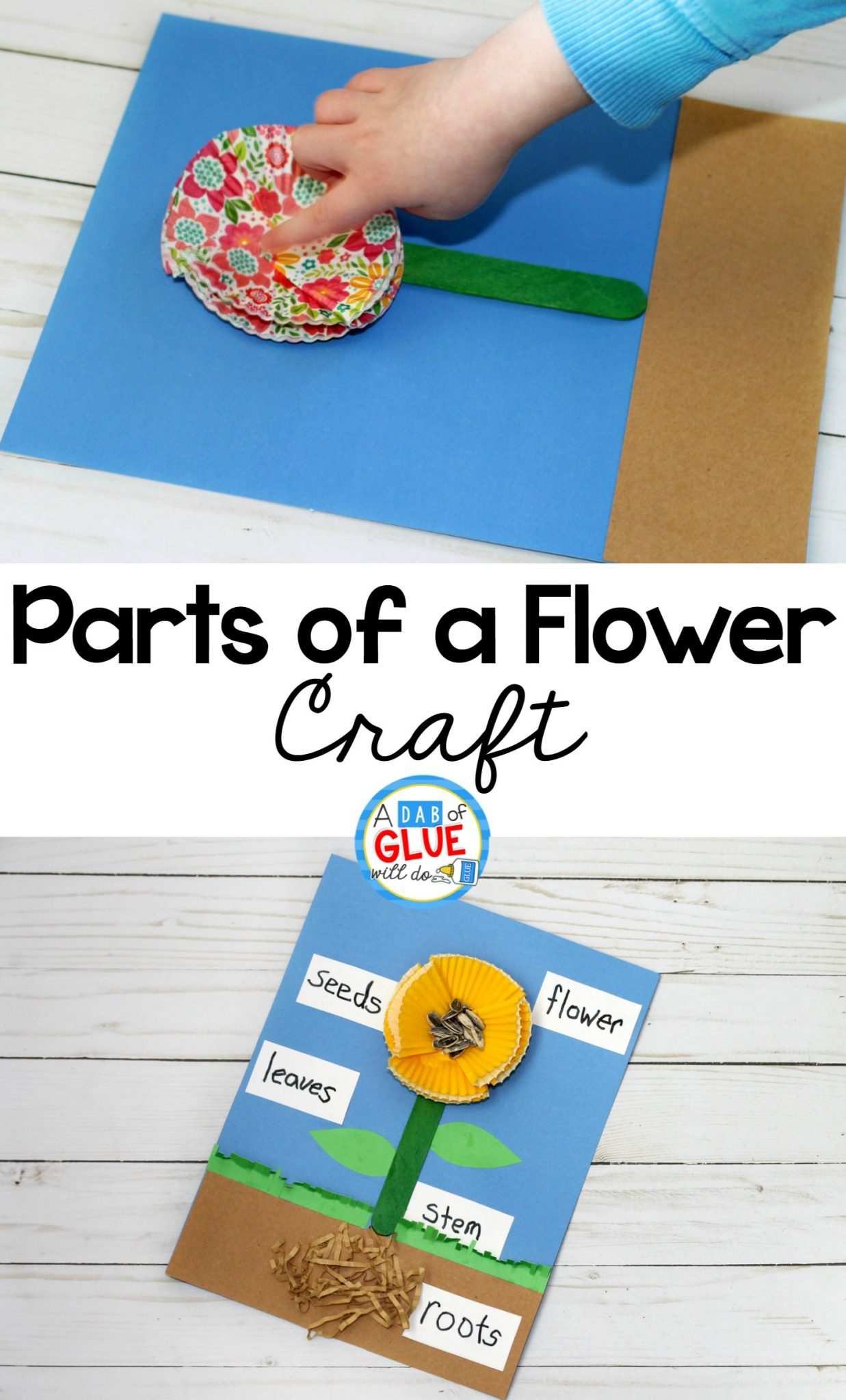 Parts Of A Flower Craft