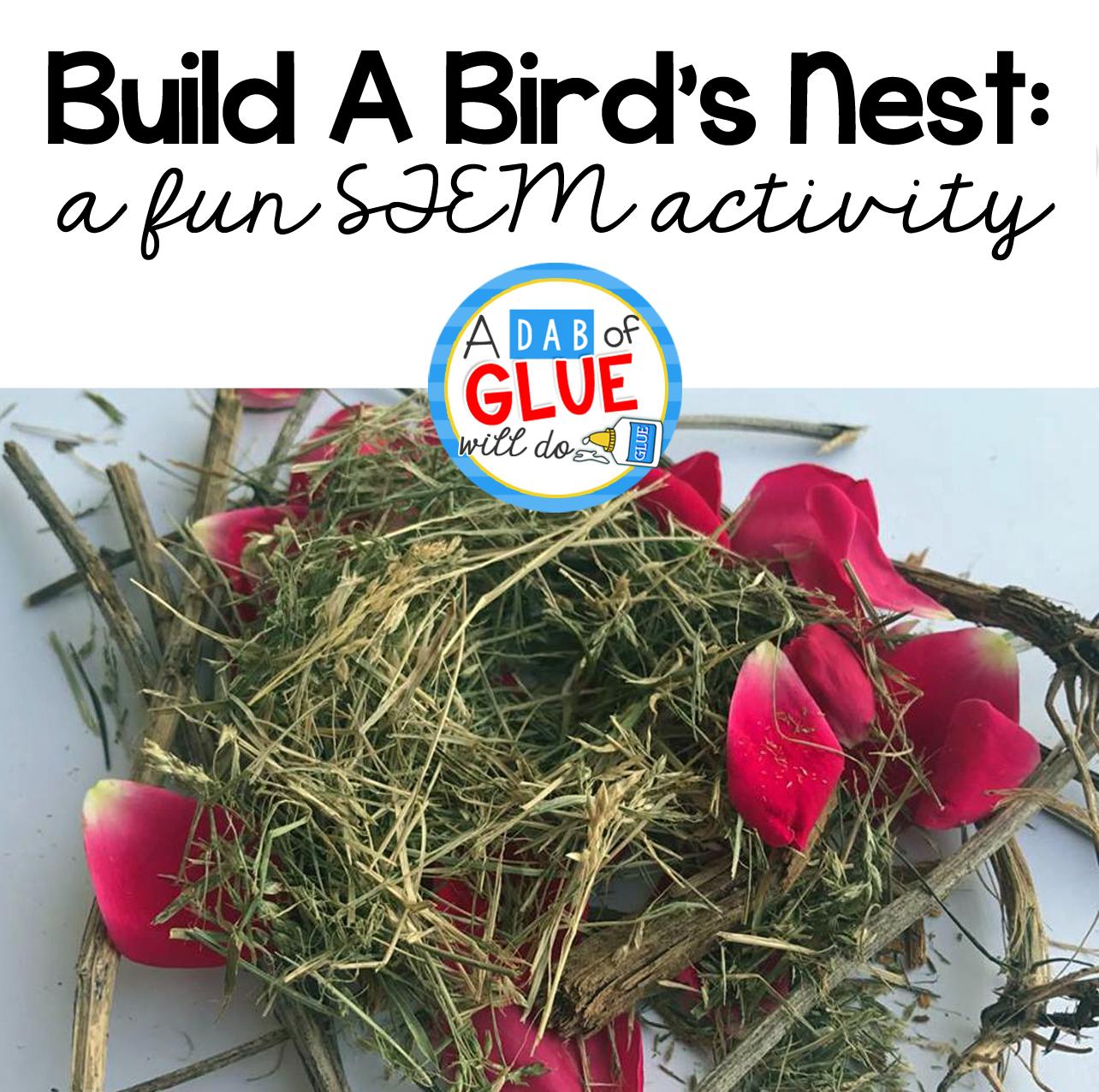 Stem For Kids Build A Bird S Nest