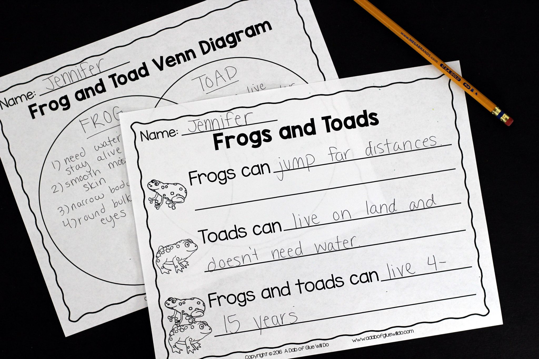 frog and toad venn diagram 2001 dodge ram radio wiring frogs an animal study engage your class in exciting hands on experience learning all about this