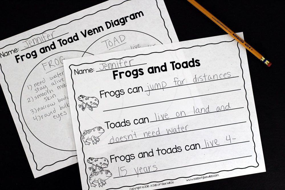 medium resolution of engage your class in an exciting hands on experience learning all about frogs this