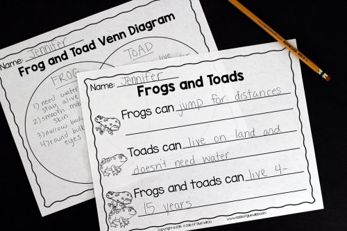 small resolution of engage your class in an exciting hands on experience learning all about frogs this