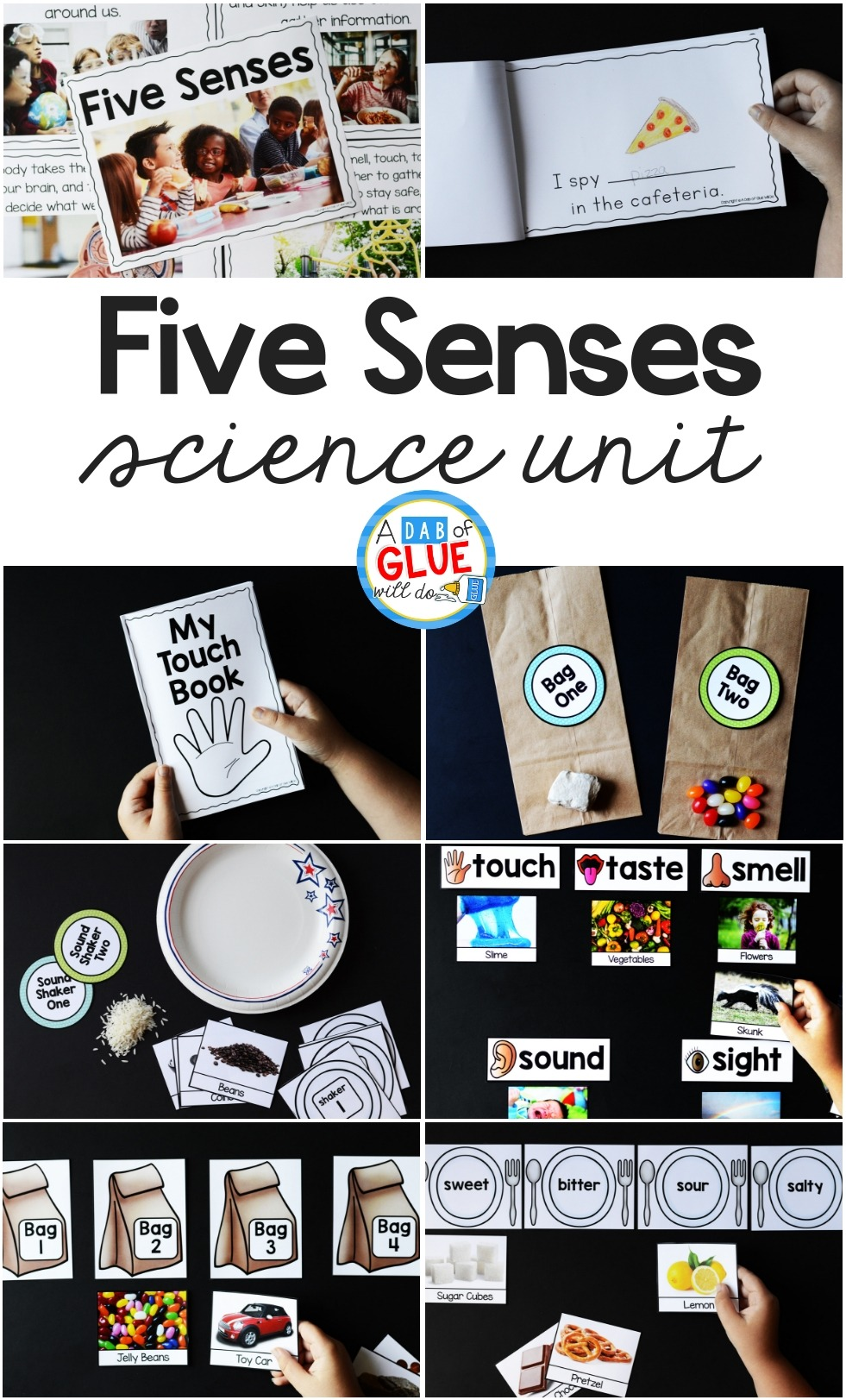 hight resolution of Five Senses Science Unit Hands-on Learning Activity