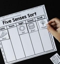 Five Senses Science Unit Hands-on Learning Activity [ 735 x 1103 Pixel ]