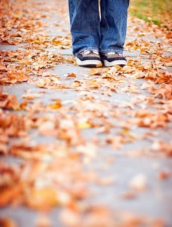 Wordless Wednesday: Fall at My Feet