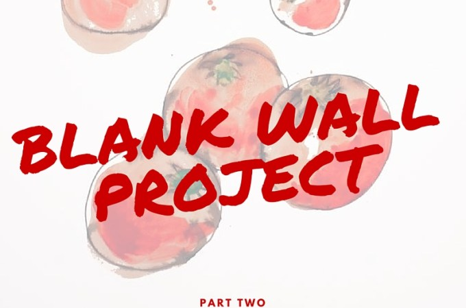The Blank Wall Project -- Part 2