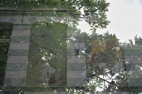 dubbel-belicht-2