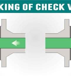 how do sanitary check valves work check valve how works diagram [ 1920 x 900 Pixel ]