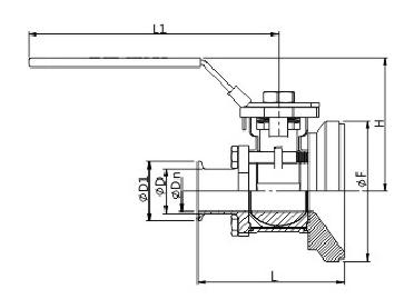AV-10MB Sanitary Manual Tank Bottom Ball Valve, Tri-clamp
