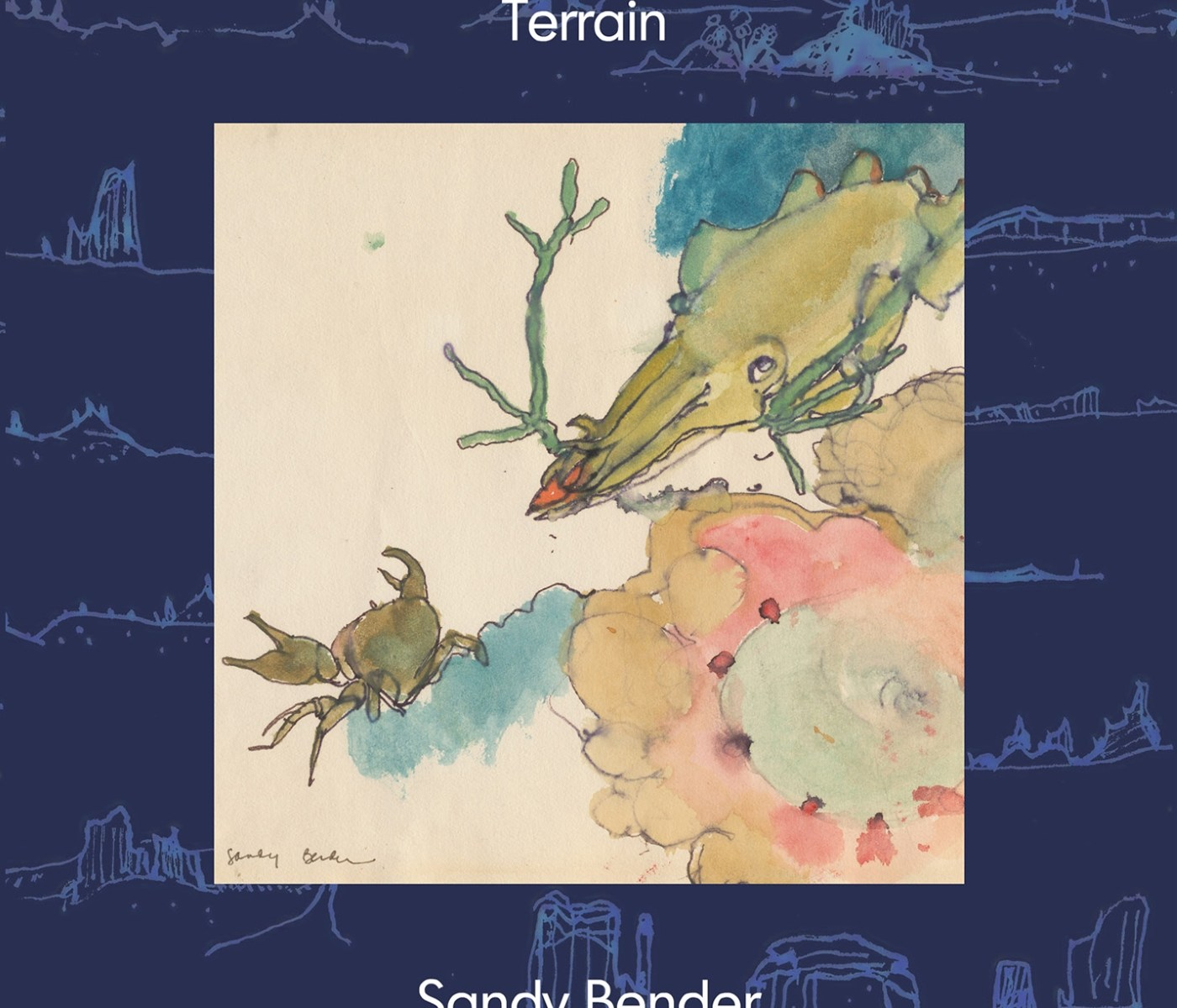 Album art for Terrain by Sandy Bender