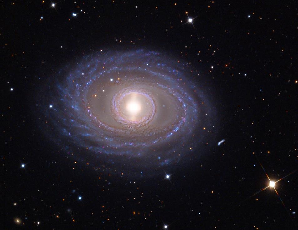 NGC 1398 - ADAM BLOCK - FINE ASTROPHOTOGRAPHY