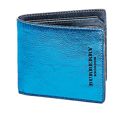 Metallic wallet