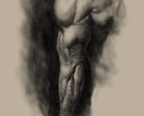 Triceps study wit digital charcoal in Procreate app by Adam Miconi