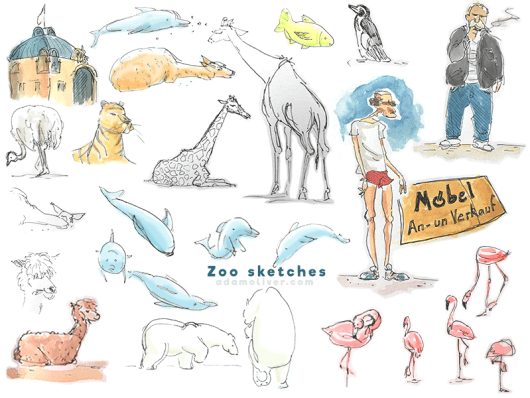 Nuremberg zoo sketches