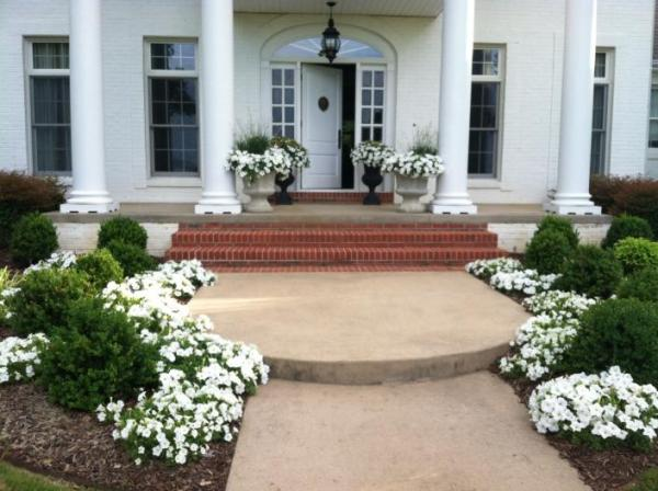 landscaping with white flowers