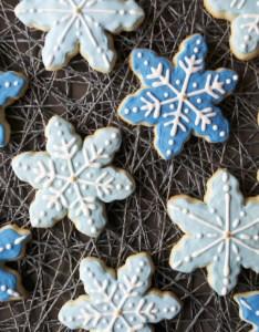 dash of megnut also gluten free snowflake cookies rh adashofmegnut