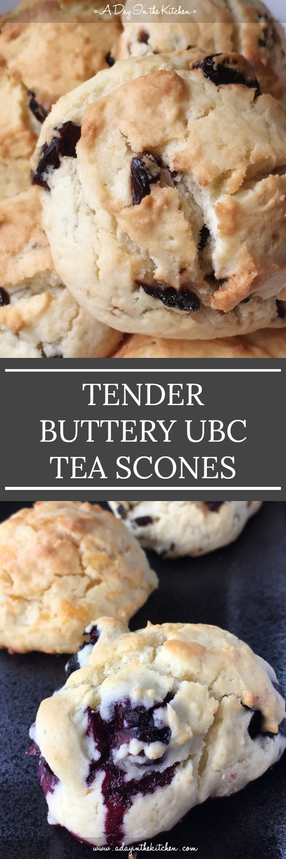These are not your typical, dry, hard-to-swallow scones! These tender buttery UBC tea scones are soft and melt-in-your-mouth delicious! Easy to make and easy to eat! #scones #teascones #ubcscones #cheesescones #blueberryscones #cranberryscones #cherryscones