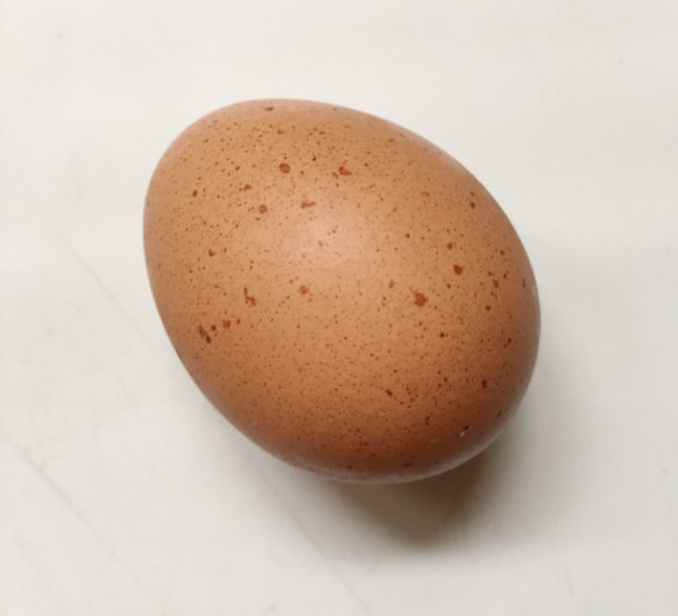 A brown egg on a white surface for how to halve an egg