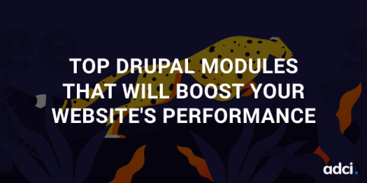 the best Drupal modules that will boost its performance.