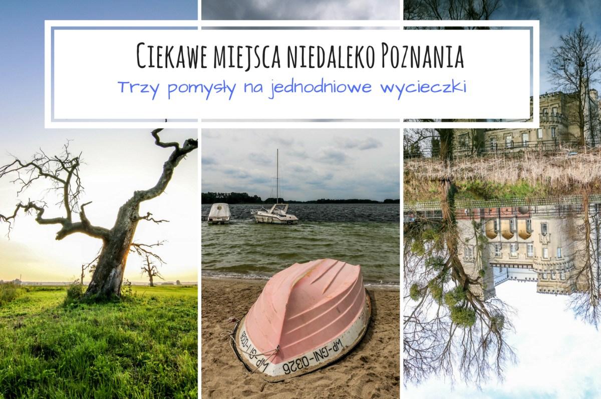 ciekawe_miejsca_niedaleko_Poznania