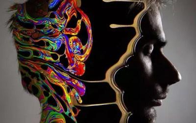 هكذا تبدو دماغ المدمن عند تناول مخدر LSD