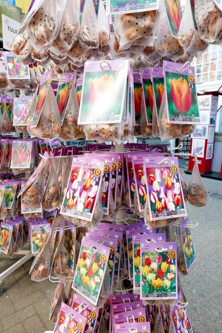 Amsterdam Tulip Market