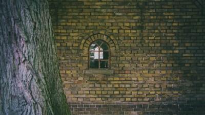 Collaborating For School Success: Tree, Windows, Schoolhouse