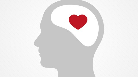 An illustration of an ADHD brain with a heart inside
