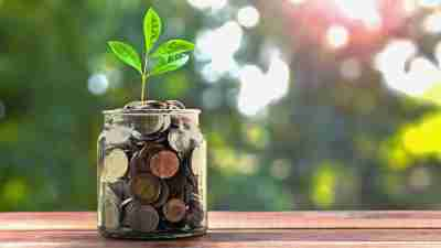 a plant grows out of a jar filled with coins, symbolizing growing savings and financial help for adults with ADHD