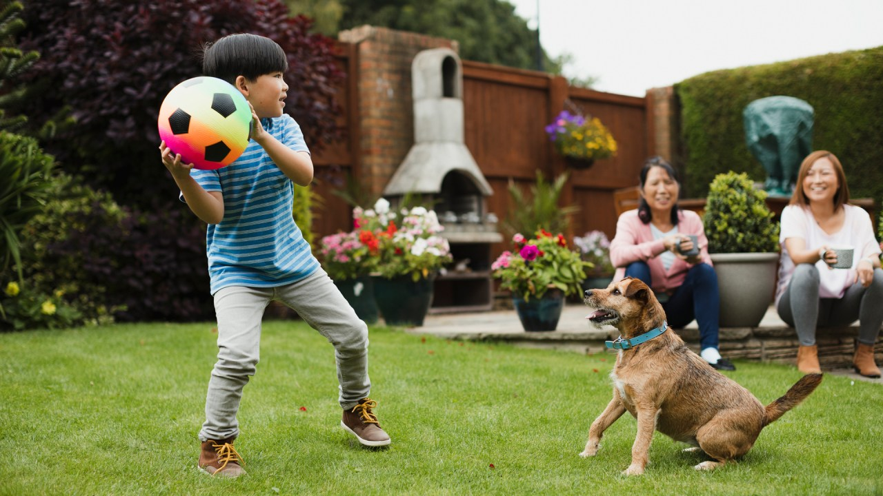 boy with ADHD playing with his dog and a soccer ball in his yard, having a successful summer