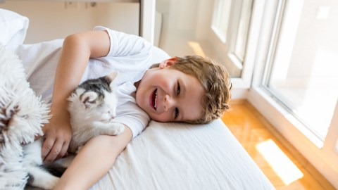 A cat wakes up a child with ADHD.